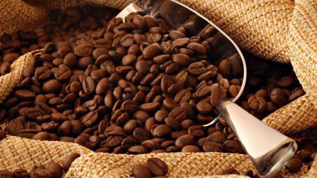 Propone México atender crisis precios del café para reducir migración