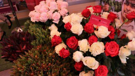 Flores guatemaltecasadornan hogares en el mundo